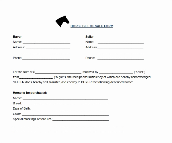 Equine Bill Of Sale Beautiful Sample Horse Bill Of Sale forms 7 Free Documents In Pdf