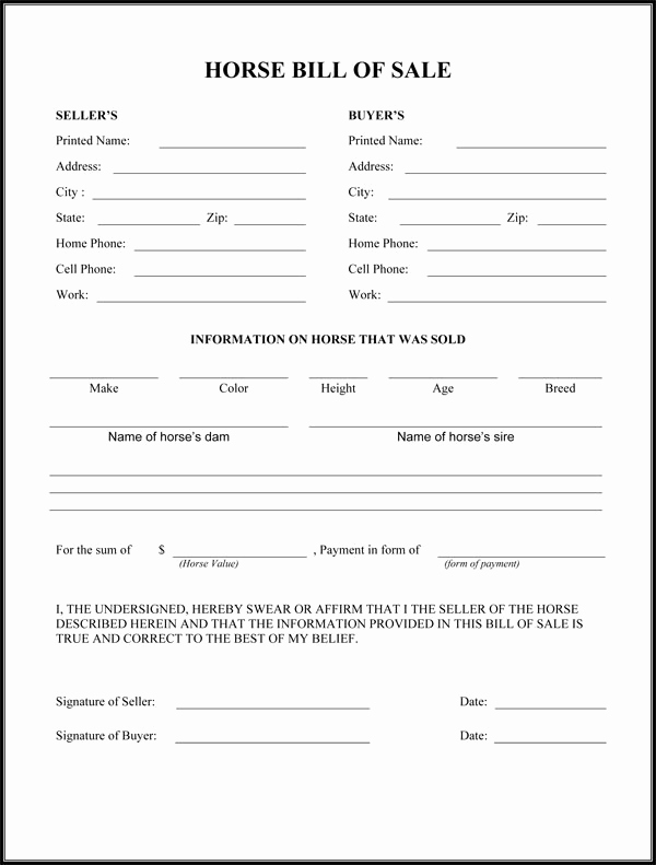 Equine Bill Of Sale Fresh Horse Bill Sale form