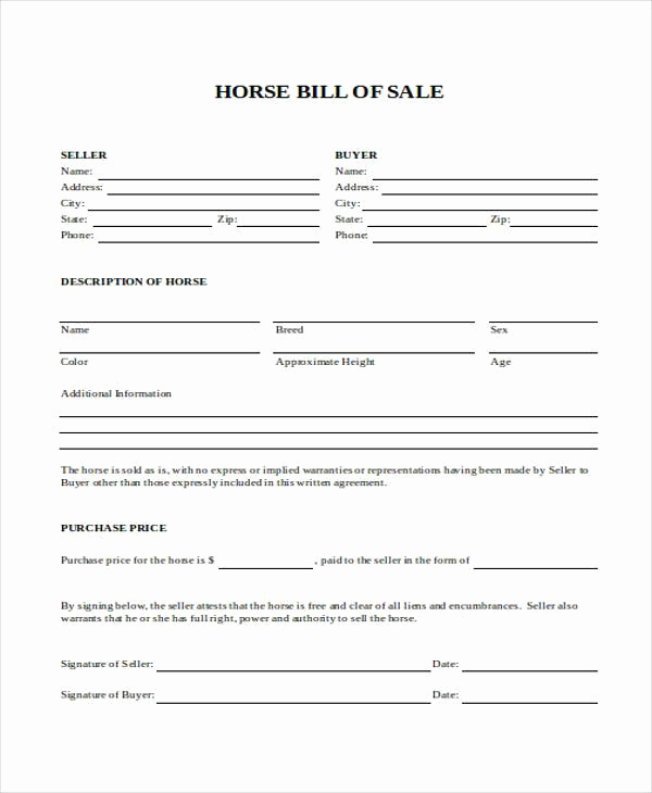 Equine Bill Of Sale Luxury Bill Of Sale form In Word