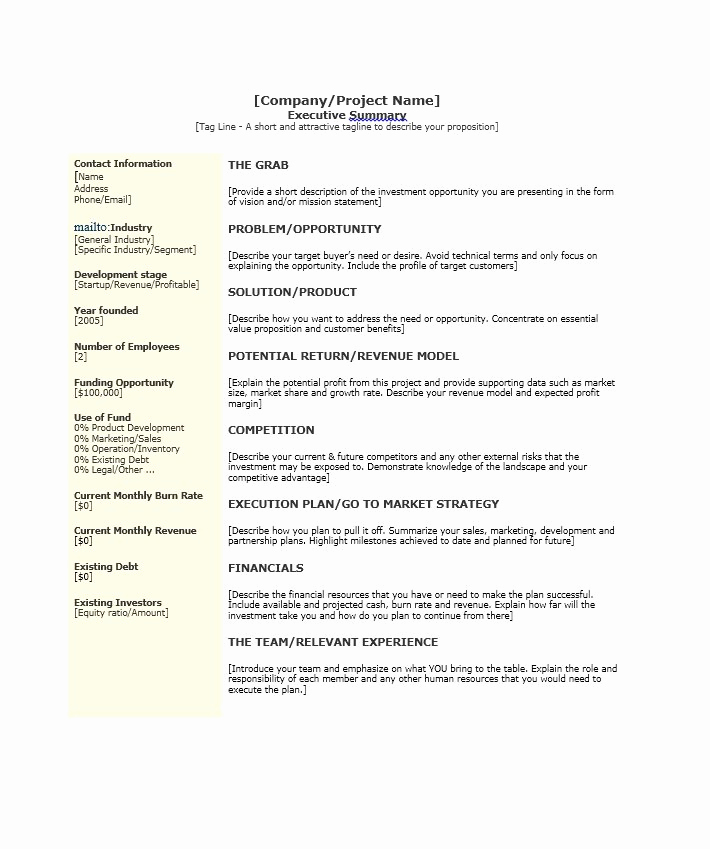 Example Of An Executive Summary Inspirational 30 Perfect Executive Summary Examples & Templates