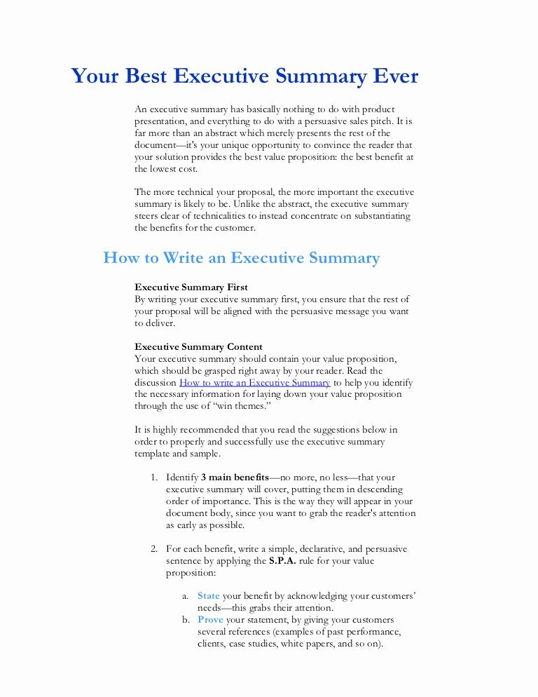 Example Of An Executive Summary Unique Executive Summary