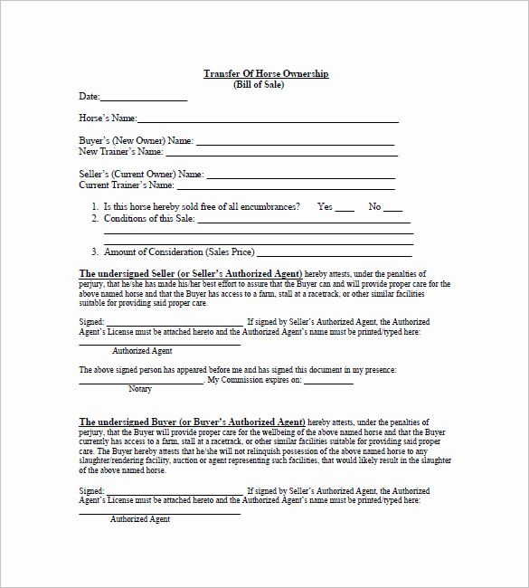 Example Of Bill Of Sale Best Of Horse Bill Of Sale – 8 Free Sample Example format