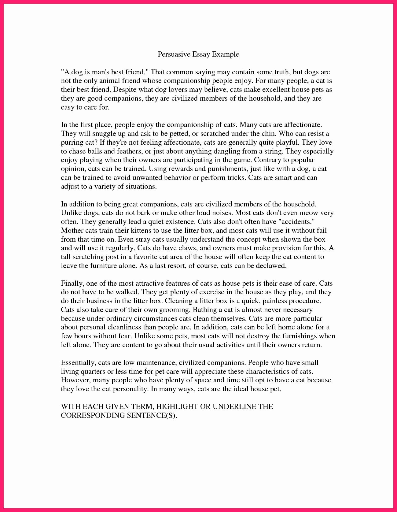 Example Of Persuasive Essay Unique Persuasive Speech Examples
