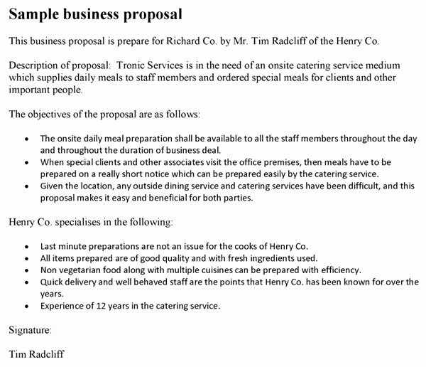 Examples Of Business Proposals Inspirational Business Proposal Template
