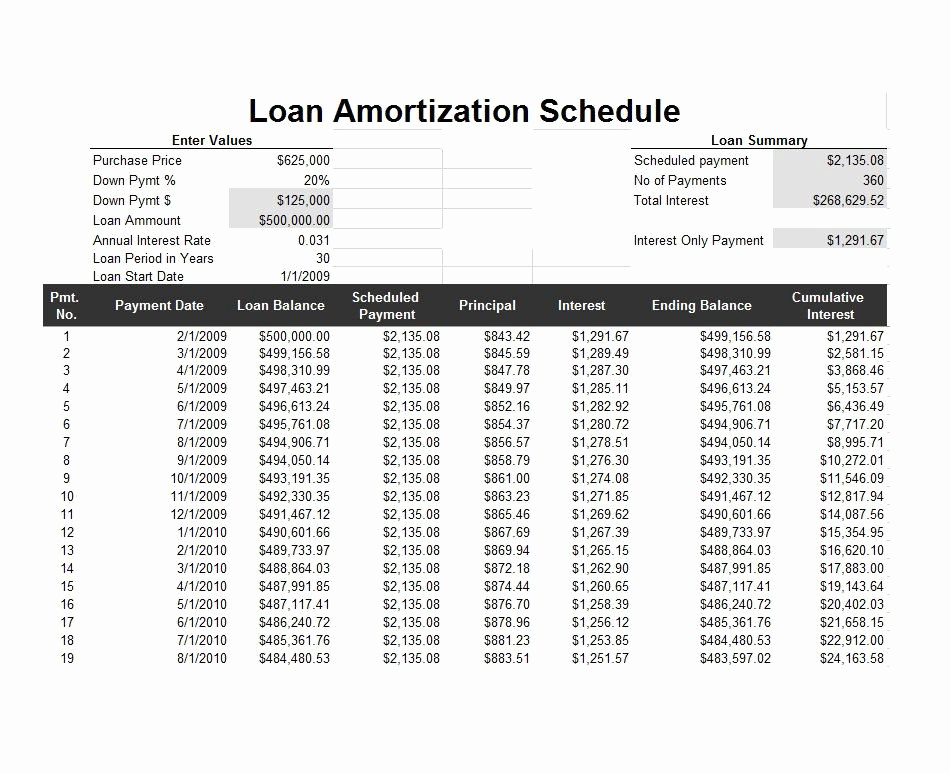 loan amortization schedule 21