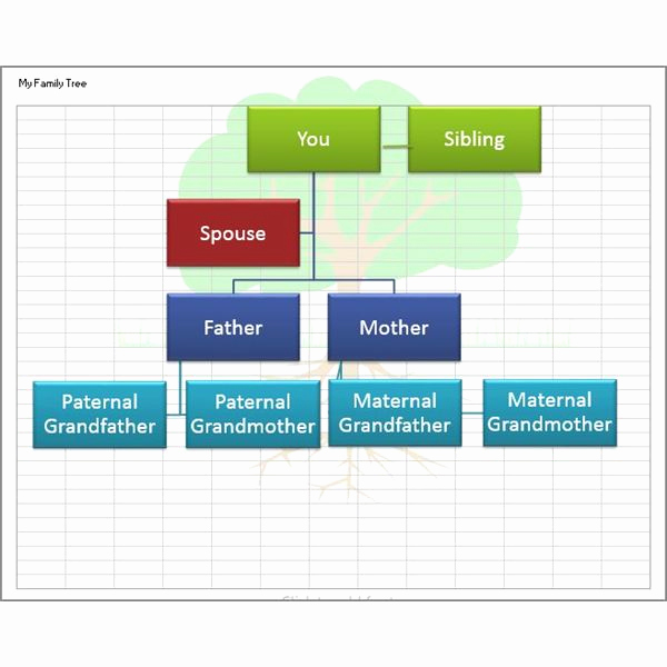 Excel Family Tree Template Beautiful Create A Family Tree with the Help Of these Free Templates