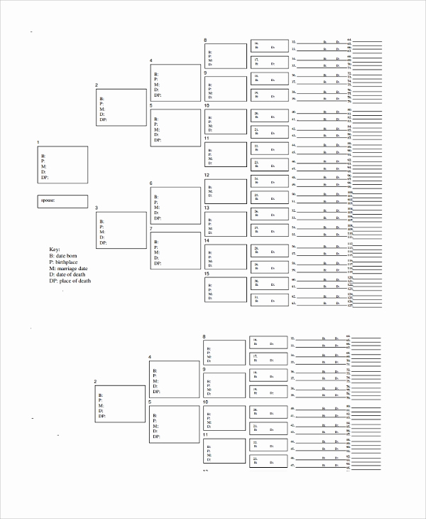 Excel Family Tree Template Lovely Sample Blank Family Tree Template 8 Free Documents