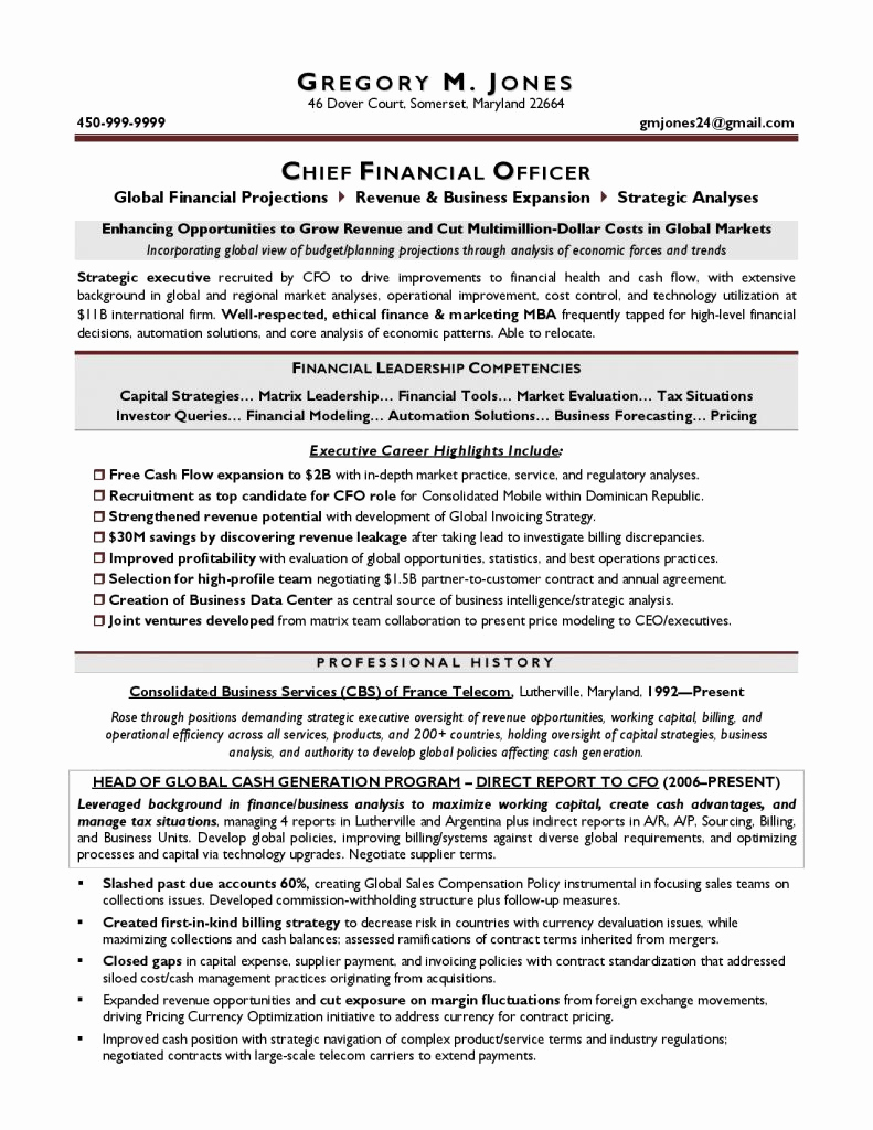 Executive Resume Template Word Awesome Executive Resume Template 31 Free Word Pdf Indesign