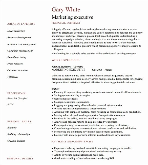 Executive Resume Template Word Beautiful 6 Executive Resume Templates Word Website Wordpress Blog