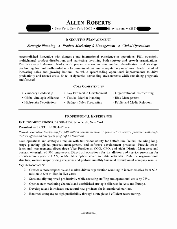 Executive Resume Template Word Beautiful Ceo & Executive Resume Sample