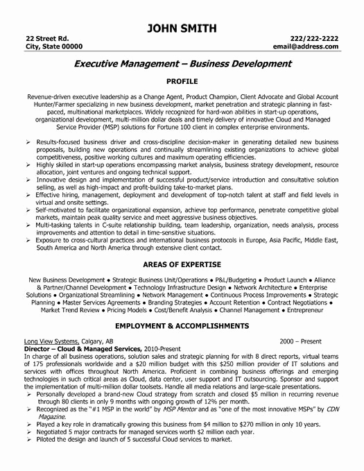 Executive Resume Template Word Best Of Best Executive Resume Templates & Samples On Pinterest