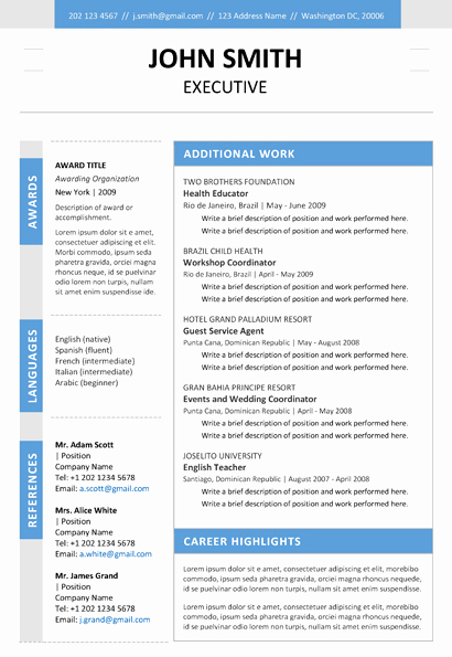 Executive Resume Template Word Best Of Executive Resume Template Trendy Resumes