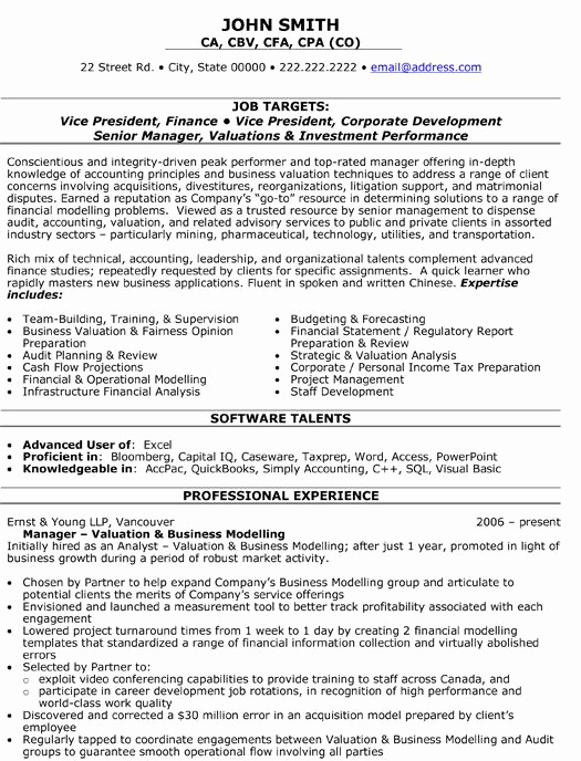 Executive Resume Template Word Fresh A Professional Resume Template for A Vice President Of