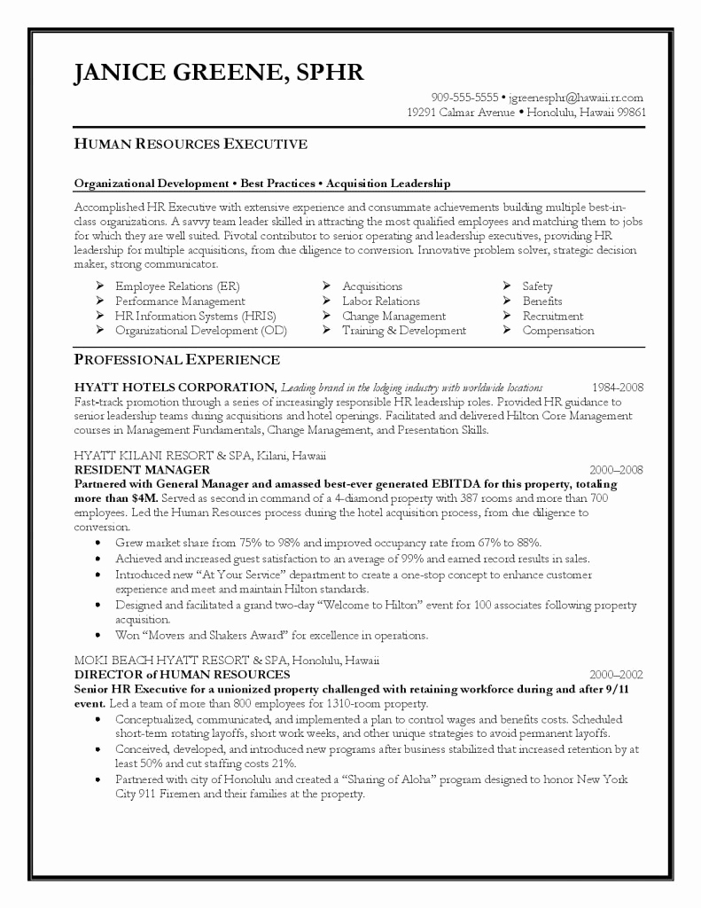 Executive Resume Template Word Fresh Executive Resume Template 31 Free Word Pdf Indesign