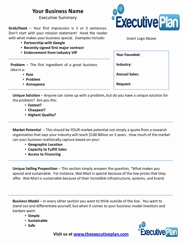 Executive Summary Example Business Plan Inspirational Examples Of An Executive Summary
