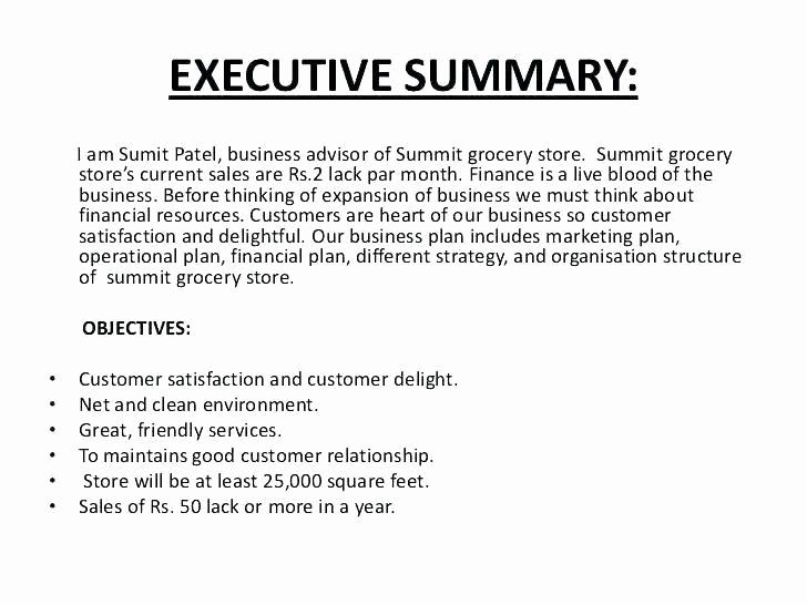 Executive Summary Example Business Plan Inspirational Executive Summary A Business Plan Template Executive
