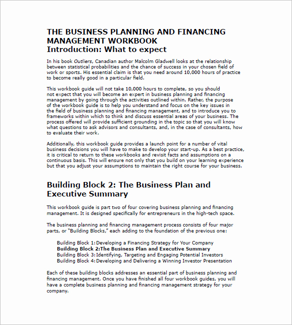 Executive Summary Example Business Plan Lovely Business Plan Template 105 Free Word Excel Pdf Psd