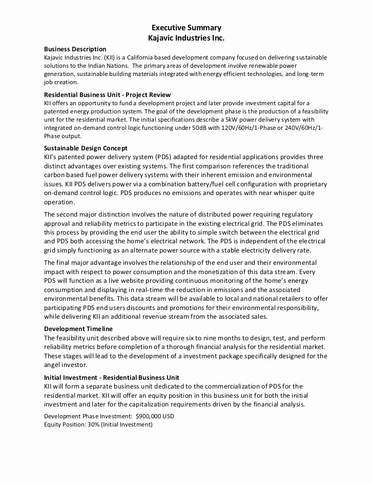 Executive Summary Example Business Plan New Best 25 Executive Summary Ideas On Pinterest
