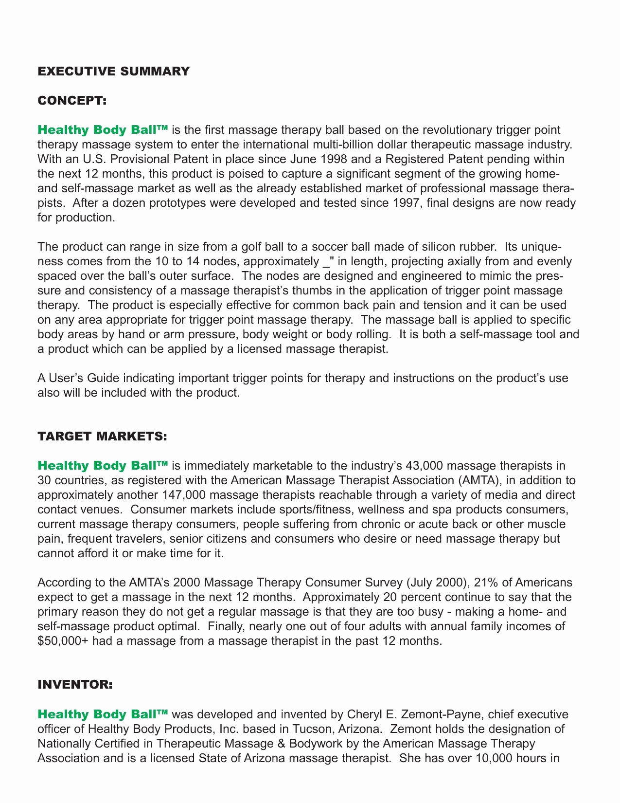 Executive Summary Example Business Plan New Business Plan Outline Sample Executive Summary