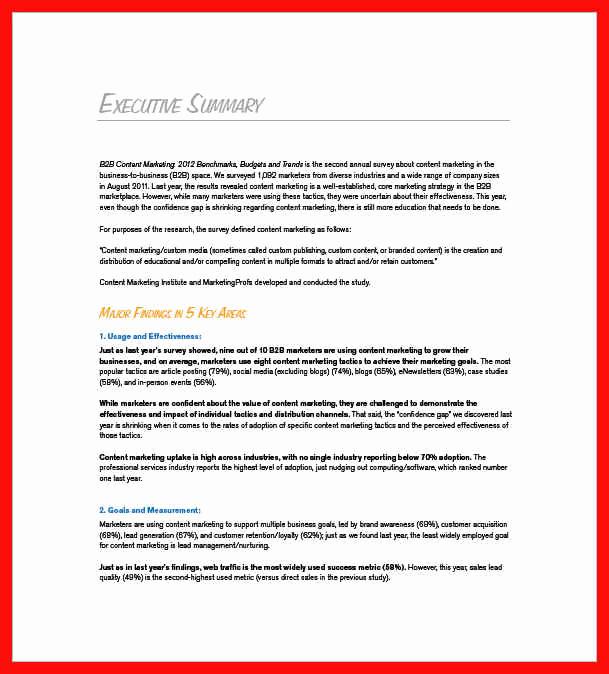 Executive Summary Marketing Plan Elegant Executive Summary Example