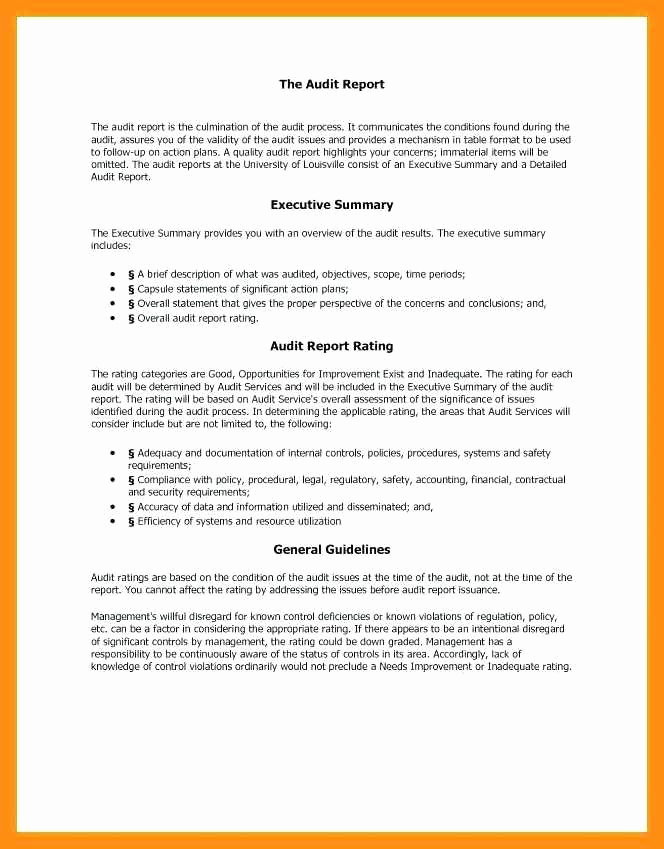 Executive Summary Report Example Awesome 9 10 Samples Of Executive Summary Report
