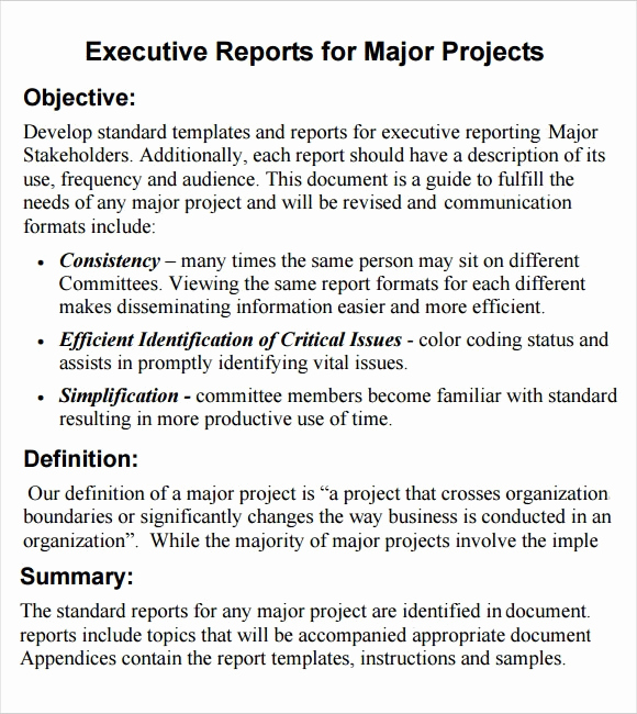 Executive Summary Report Example Beautiful Sample Executive Report 8 Documents I N Pdf Word
