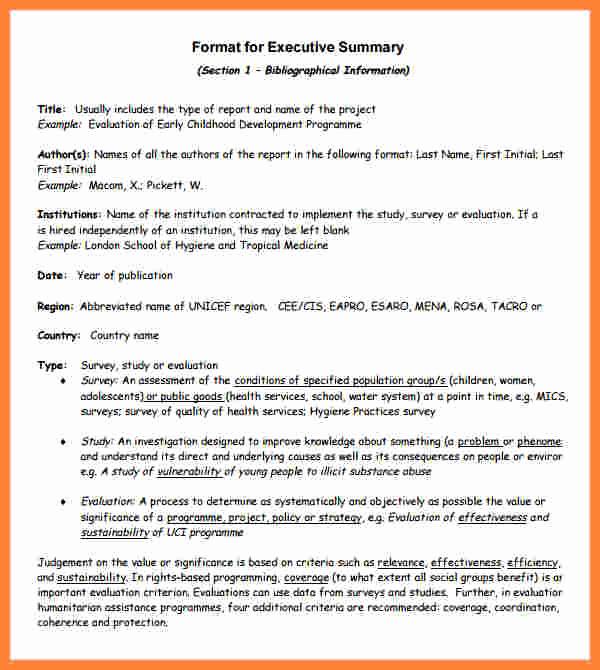Executive Summary Report Example Elegant 7 Executive Summary Report Example Template