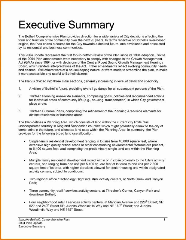 Executive Summary Report Example Elegant Executive Summary Sample