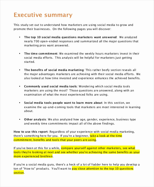 Executive Summary Report Example Inspirational 10 Marketing Report Examples Pdf Word Pages