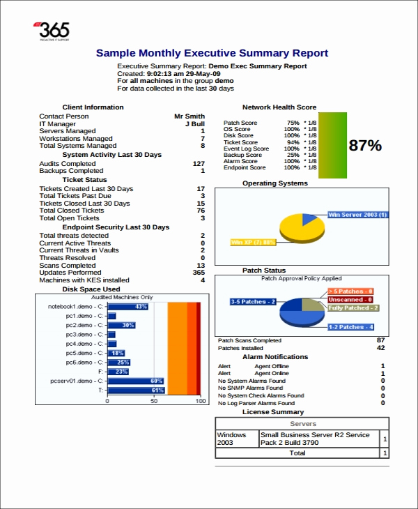 Executive Summary Report Example Inspirational 9 Executive Report Templates Word Pdf Apple Pages