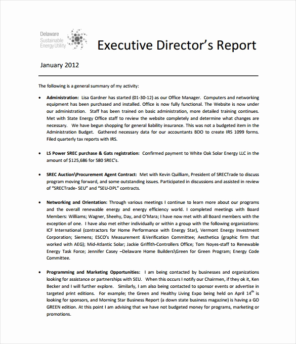 Executive Summary Report Example Inspirational Executive Report Template 15 Free Sample Example