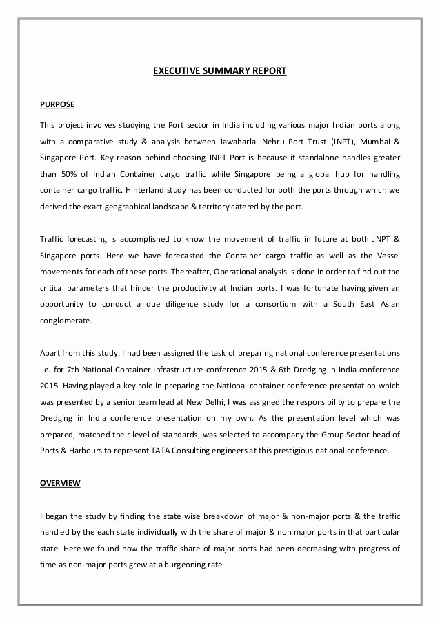 Executive Summary Report Example Inspirational Mip Executive Summary Report