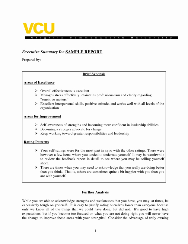 Executive Summary Report Example Unique Sample Executive Summary A Report Template Business