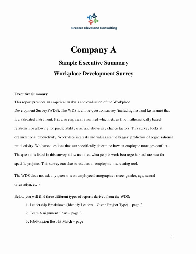 Executive Summary Sample for Proposal Beautiful Sample Executive Summary
