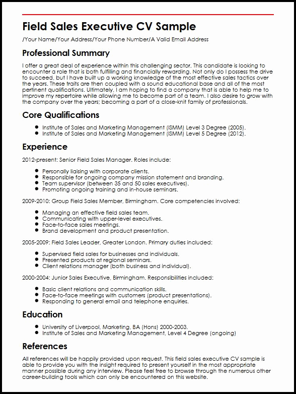 Executive Summary Sample Pdf Fresh Field Sales Executive Cv Sample