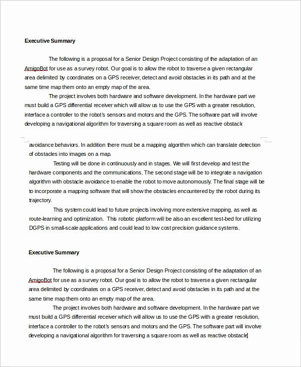 Executive Summary Template Word Beautiful Executive Summary Template