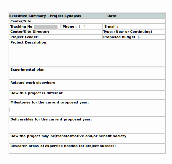 Executive Summary Template Word Best Of Sample Executive Summary Template 8 Documents In Pdf