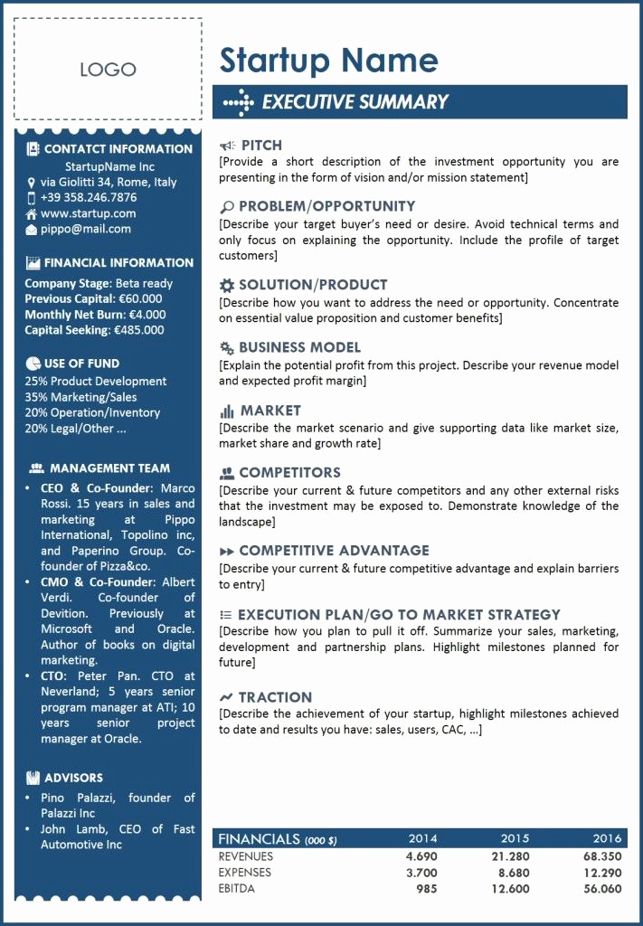 Executive Summary Template Word Lovely Executive Summary Template 2 … Templates