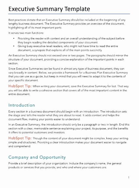 Executive Summary Template Word Lovely Free Business Plans Pdf & Word Template