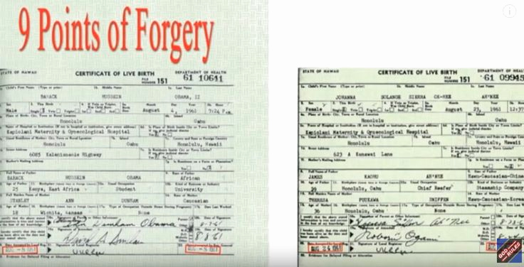 Fake Birth Certificate Maker New Best 25 Fake Birth Certificate Ideas On Pinterest