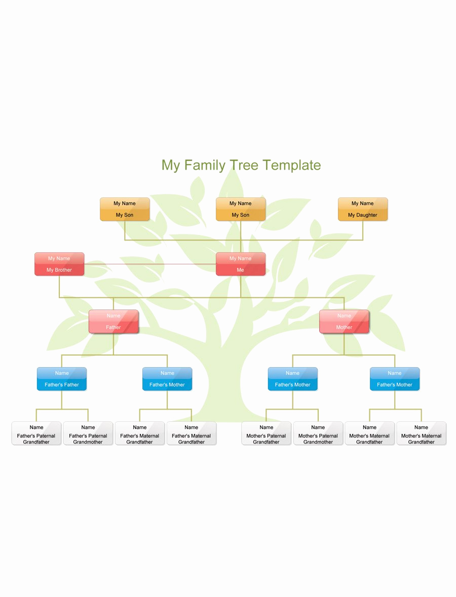 Family Tree Template Online Lovely 50 Free Family Tree Templates Word Excel Pdf