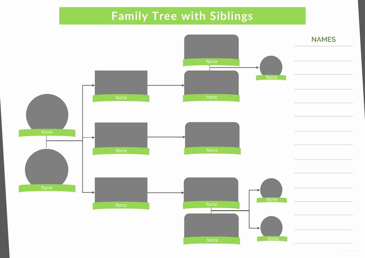 Family Tree Template with Siblings Elegant 37 Family Tree Templates Pdf Doc Excel Psd