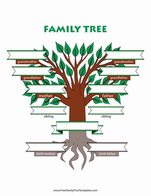 Family Tree Template with Siblings Elegant Adoptive Family Tree with Siblings Template – Free Family