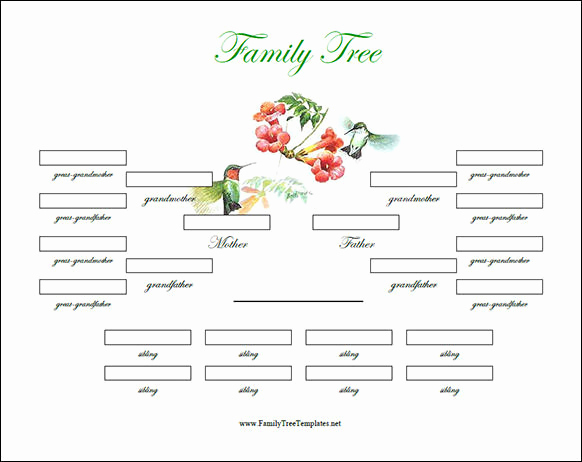 Family Tree Template with Siblings Fresh Genealogy Family Tree Templates Excel form Resume
