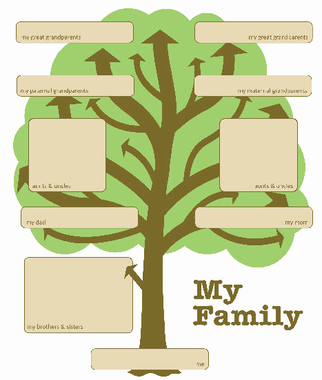 Family Tree Template with Siblings Lovely Printable Family Tree with Siblings Printable Pages
