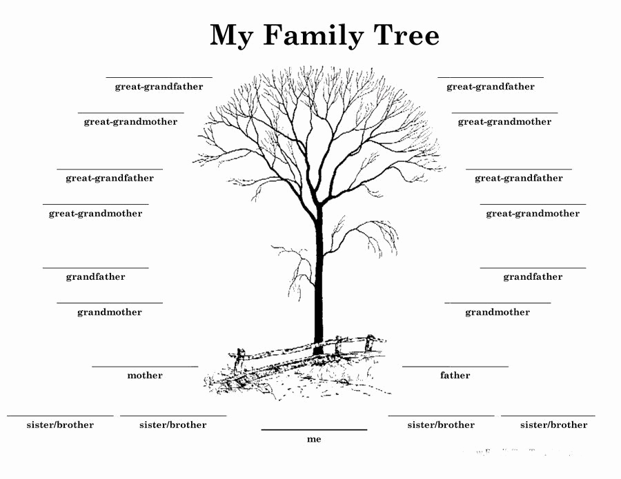 Family Tree Template with Siblings Unique Download Family Tree Template 13