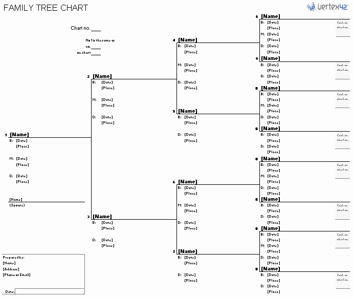 Family Tree Templates Excel Beautiful Free Family Tree Template