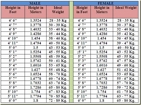 Female Height and Weight Chart Awesome Best 25 Height Weight Charts Ideas On Pinterest