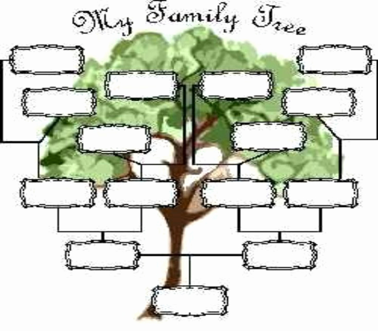 Free Family Tree Template | Printable Blank Family Tree Chart |Empty Family Tree