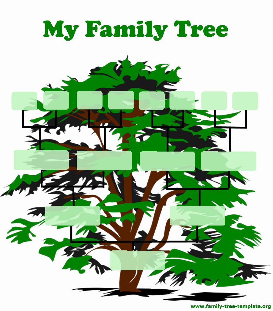 Fill In Family Tree Luxury Family Tree Template Resources